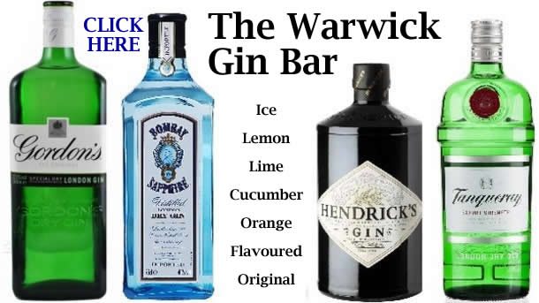 Gin Bar @ The Warwick, Worthing